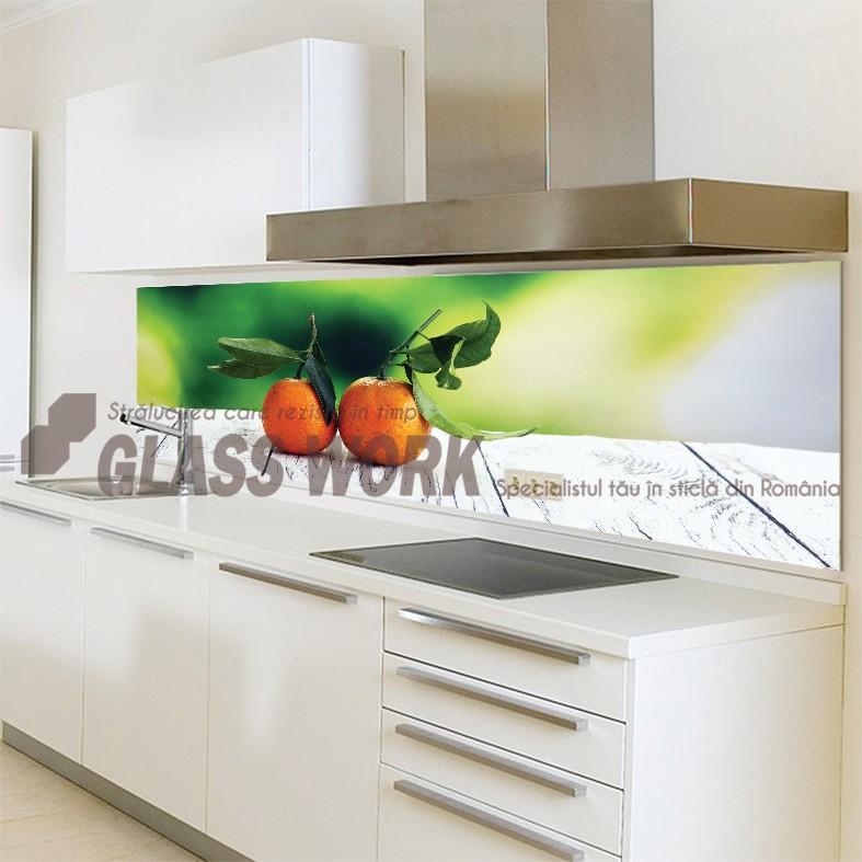 Placări cu sticlă colorată/printată